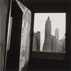 """View South from 100 Gold Street, from """"The Destruction of Lower Manhattan"""""""