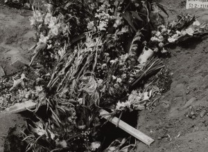 Flowers for the Dead II, Mazatlan, Mexico