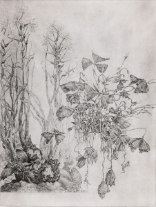 Alternate Landscape, 1999.43.3