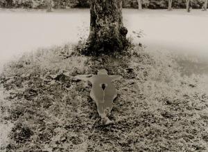 Shadow of a Bodhi Tree (Nude portfolio)