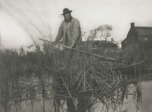 Cutting the Gladdon, from Life and Landscape on the Norfolk Broads