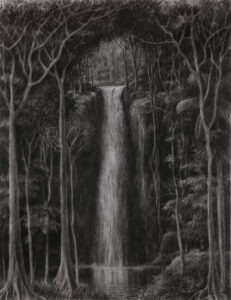 """Tomás Sánchez Cuban, b. 1948 """"Caída de Aguas (Waterfall)"""", 2003 Charcoal and pastel on paper Purchase, Barbara Doyle Duncan, class of 1943, Fund for Contemporary Latin American Drawings, 2003.25"""