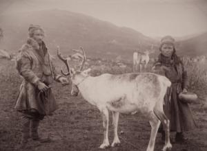 Laplanders with deer