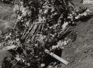 Flowers for the Dead II, Mazatlan, Mexico