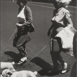 Two Women with Poodles